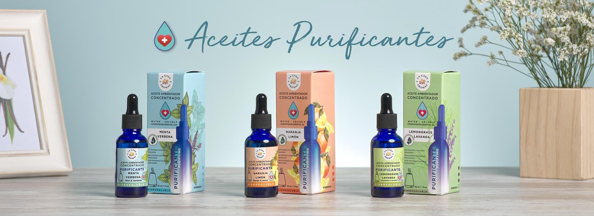 Aceites Purificantes